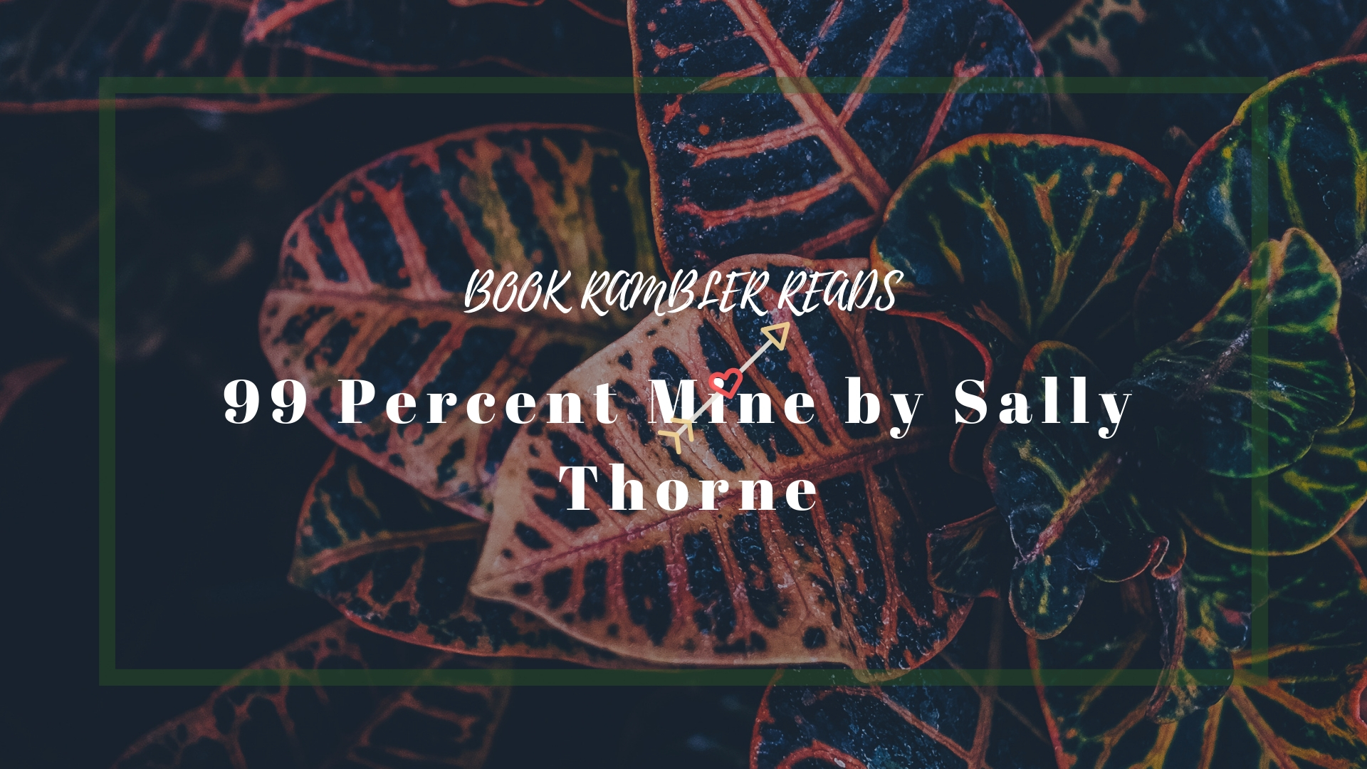 99 Percent Mine by Sally Thorne | ARC Review